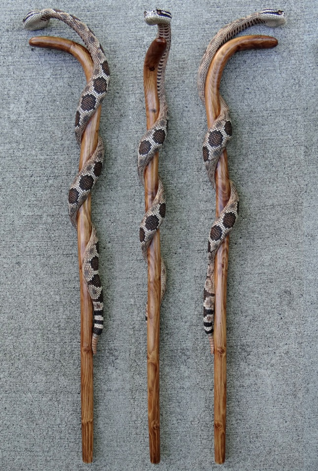 wood for walking sticks